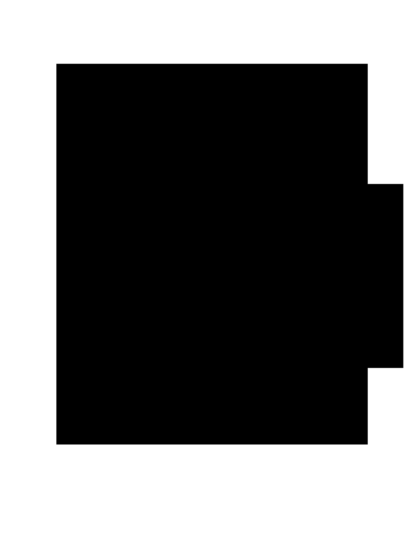 lupetti logo .png