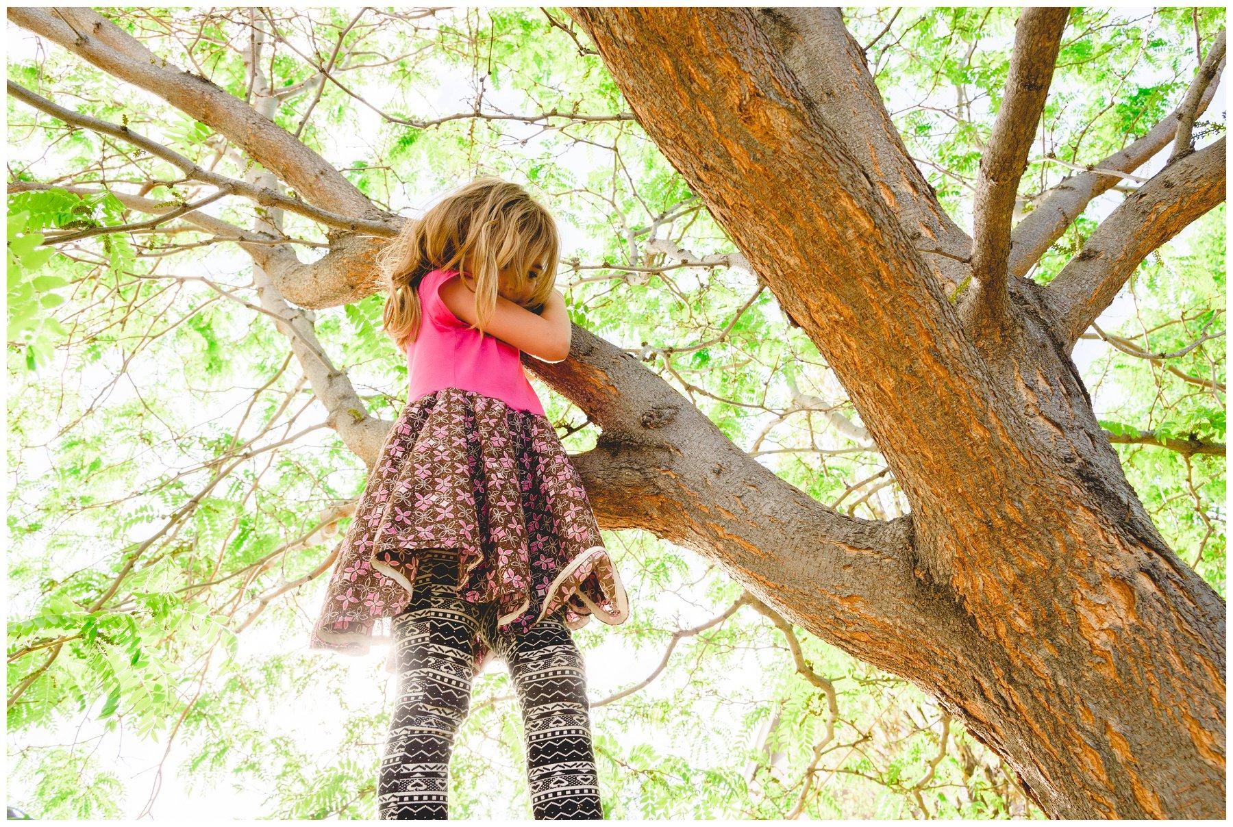TreeClimbin4.jpg