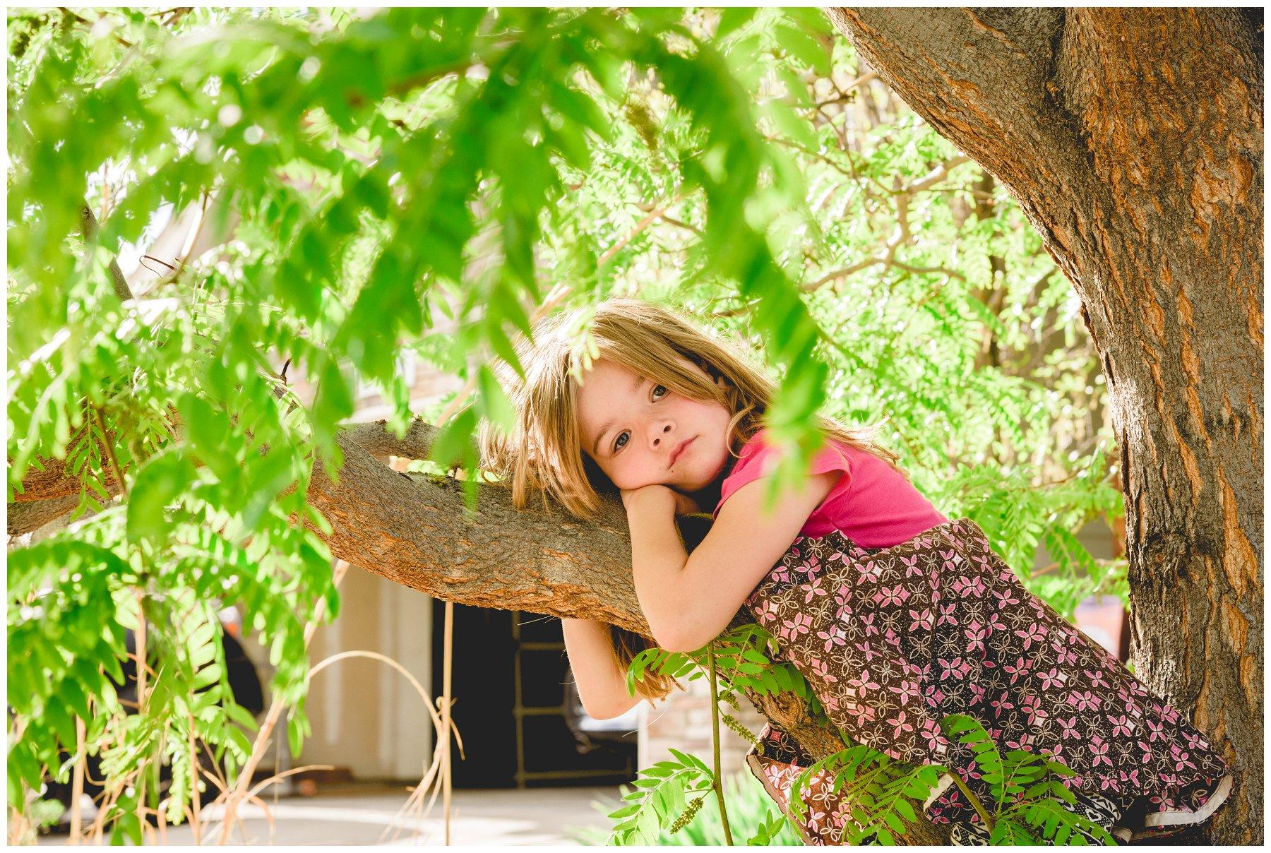 TreeClimbin5.jpg