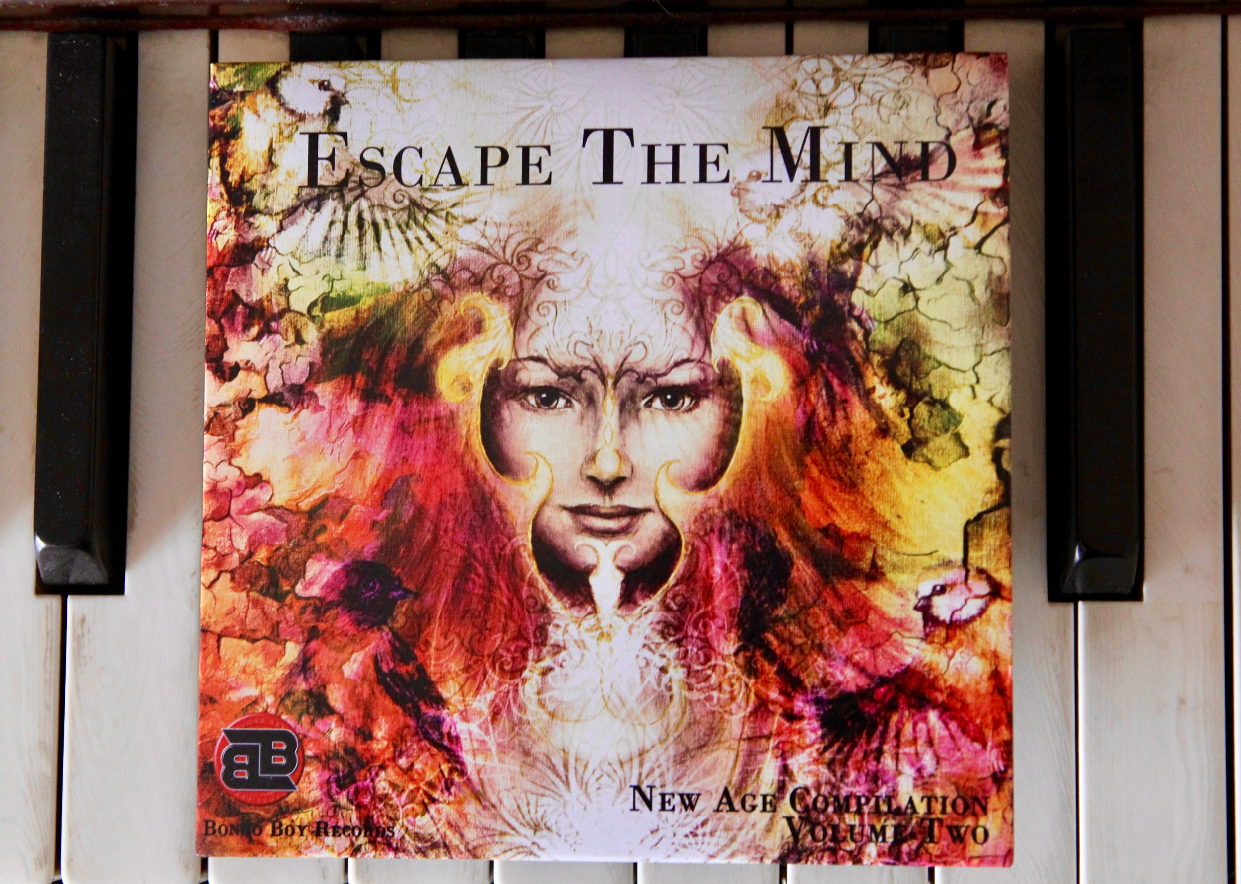 "Bongo Boy Records has released ""Escape The Mind,"" which features Brooks & Day's ""Mystic Message"" and 11 other New Age songs."