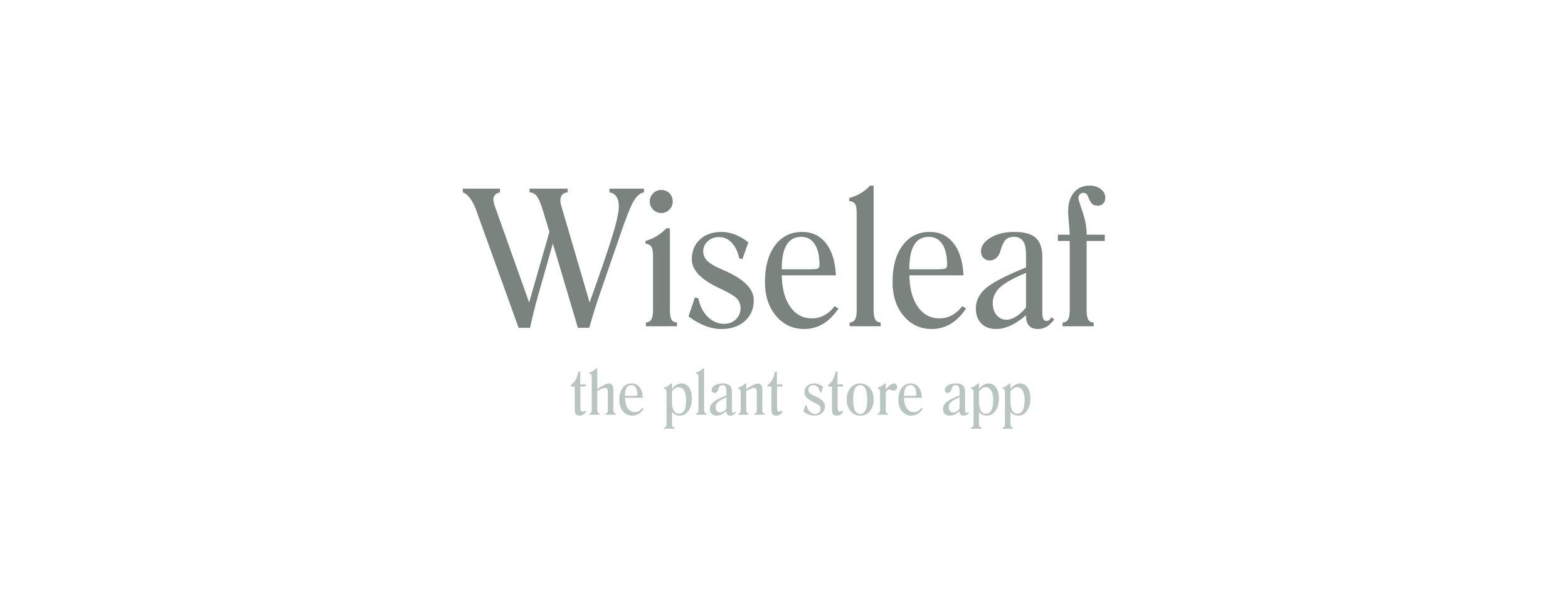 wiseleaf_header.jpg