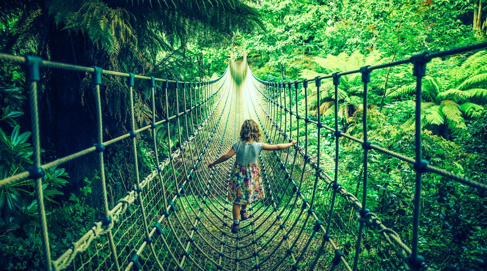 Heligan_Rope_Bridge.jpg