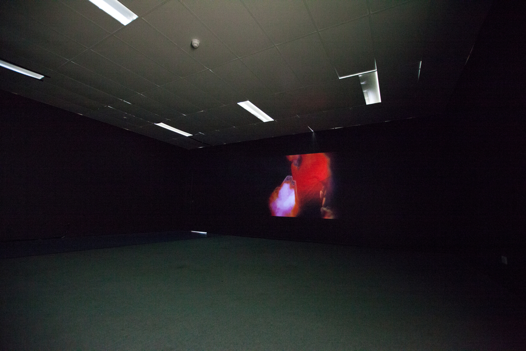 I Heart Video Art - Curated by ANCA Gallery (ACT)Works by: Alexander Boynes, Nicci Haynes, Caroline Huf, Ellis Hutch, Janice Kuczkowski, Blaide Lallemand, Heike Qualitz, Dan Vukovljak, Danny Wild and Amelia Zaraftis (ACT)