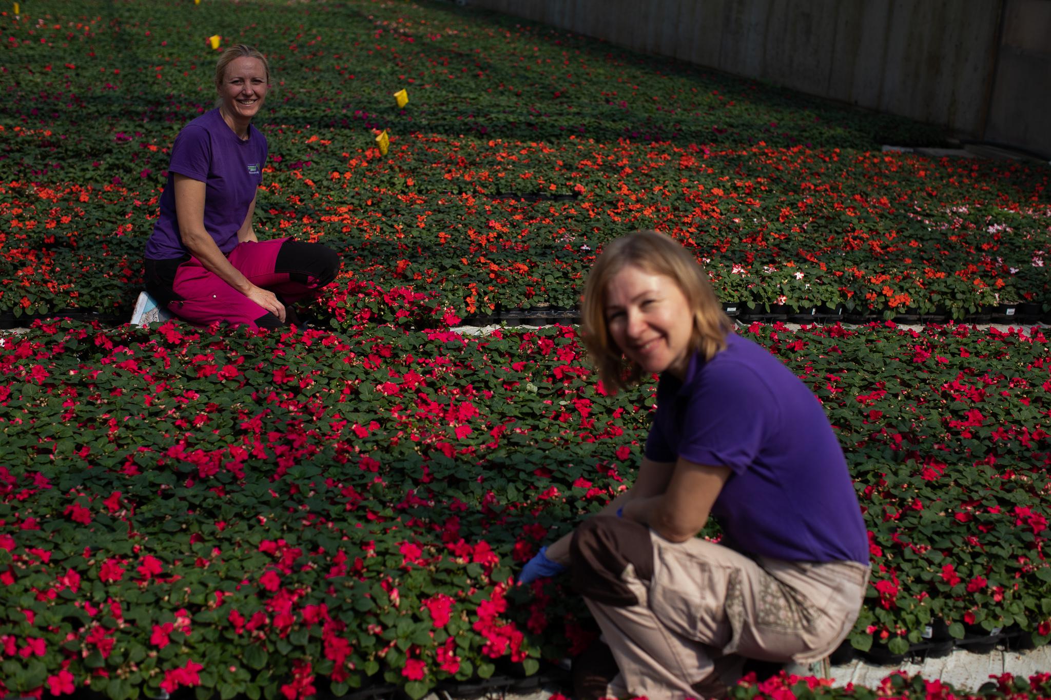 To av våre flinke, trofaste damer i et veldig fint blomsterhav av Flittiglise!
