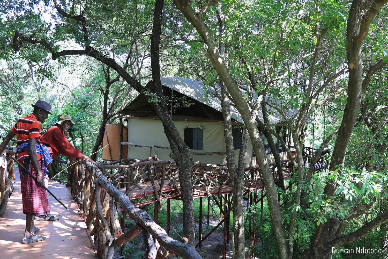 The Rhino Boma is made up of eight tree houses and is able to host 16 guests