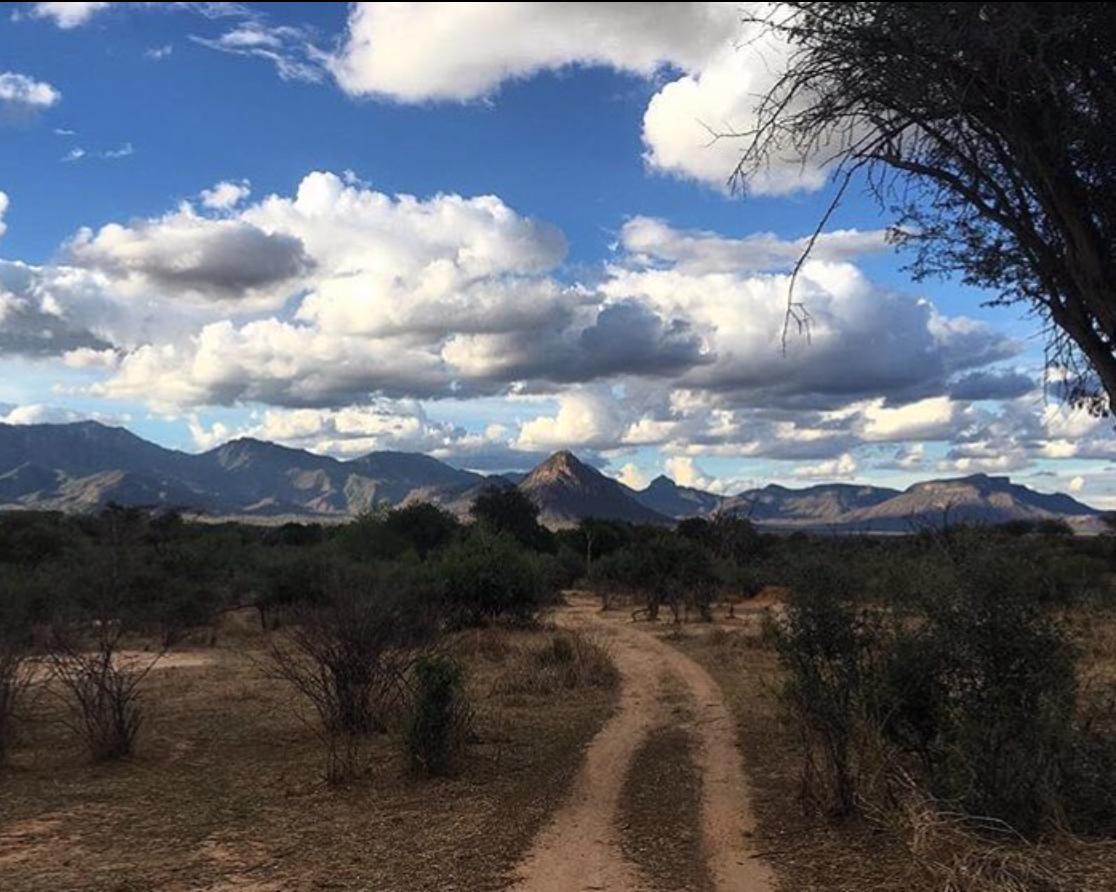 A Samburu landscape - Namunyak conservancy. Photo: Kieran Avery.
