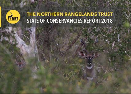 Annual Report '18