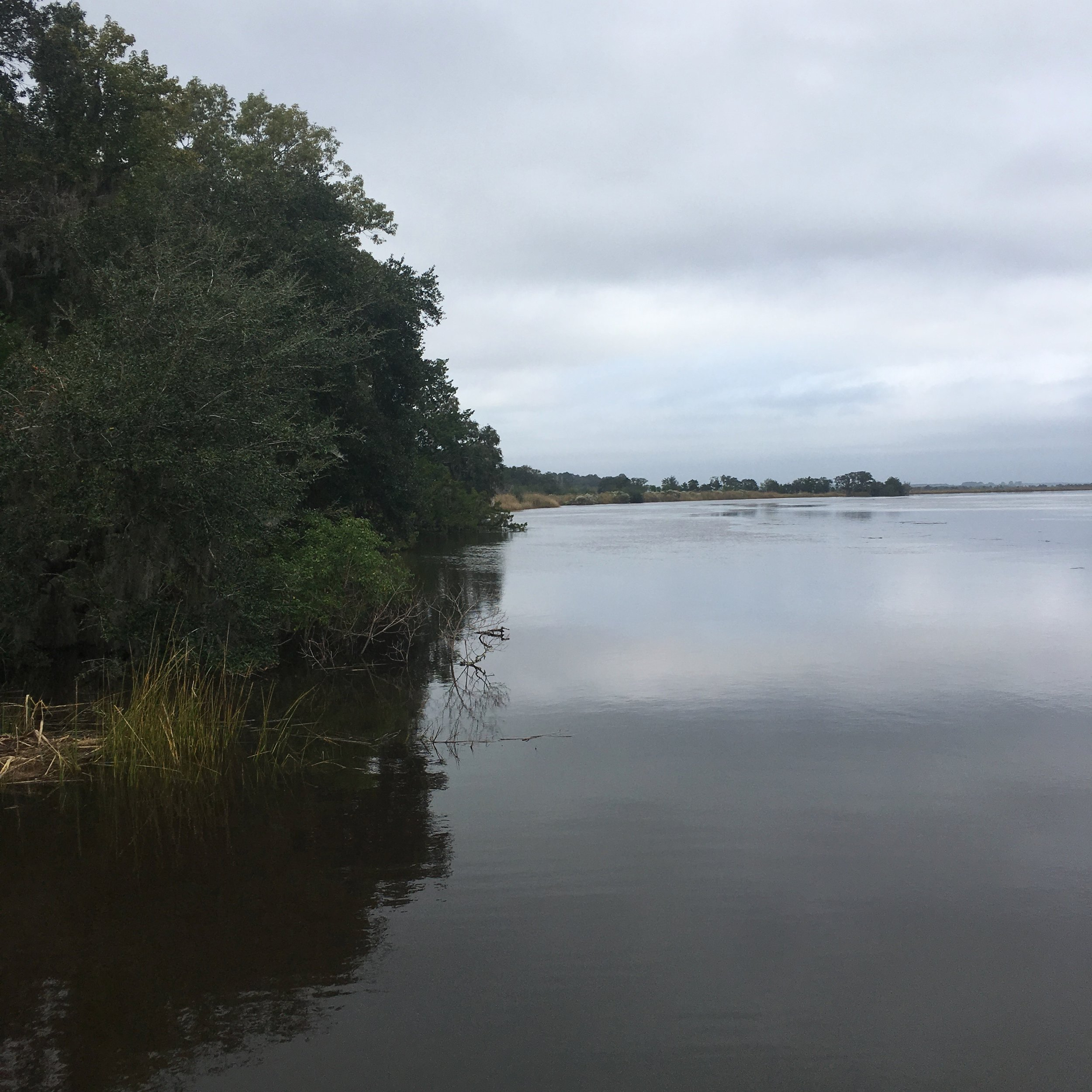 The Combahee River: on a recent road trip, I made my husband pull over into a tiny fisherman's parking lot because I thought the spot looked pretty. Lo and behold, there was a sign about Harriet's river raid! It was fate, I tell you.