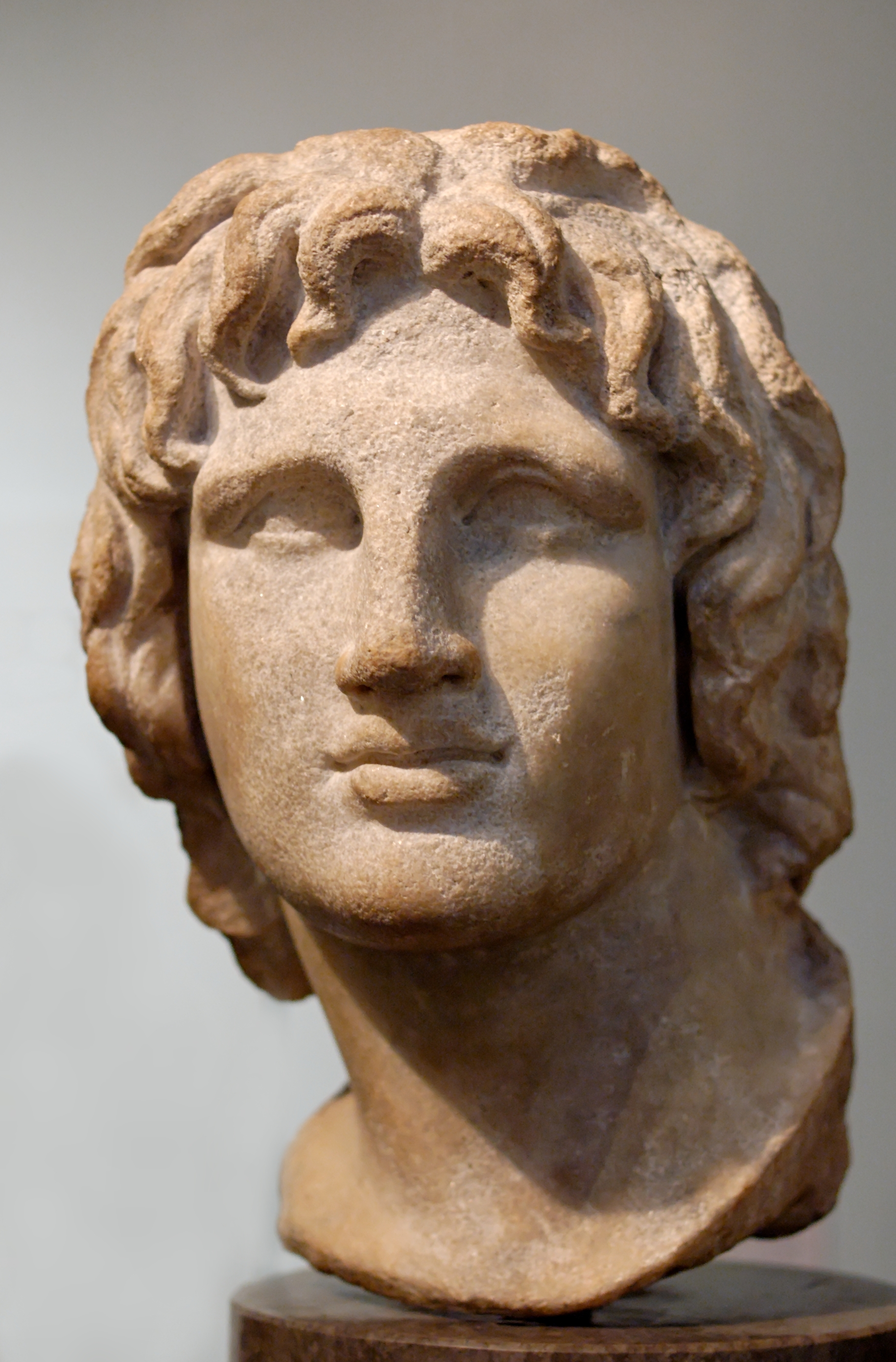 A young Alexander, dreaming of conquest. - Bust of Alexander the Great, Wikicommons.