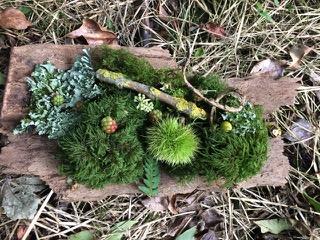 Forest Bits.jpeg