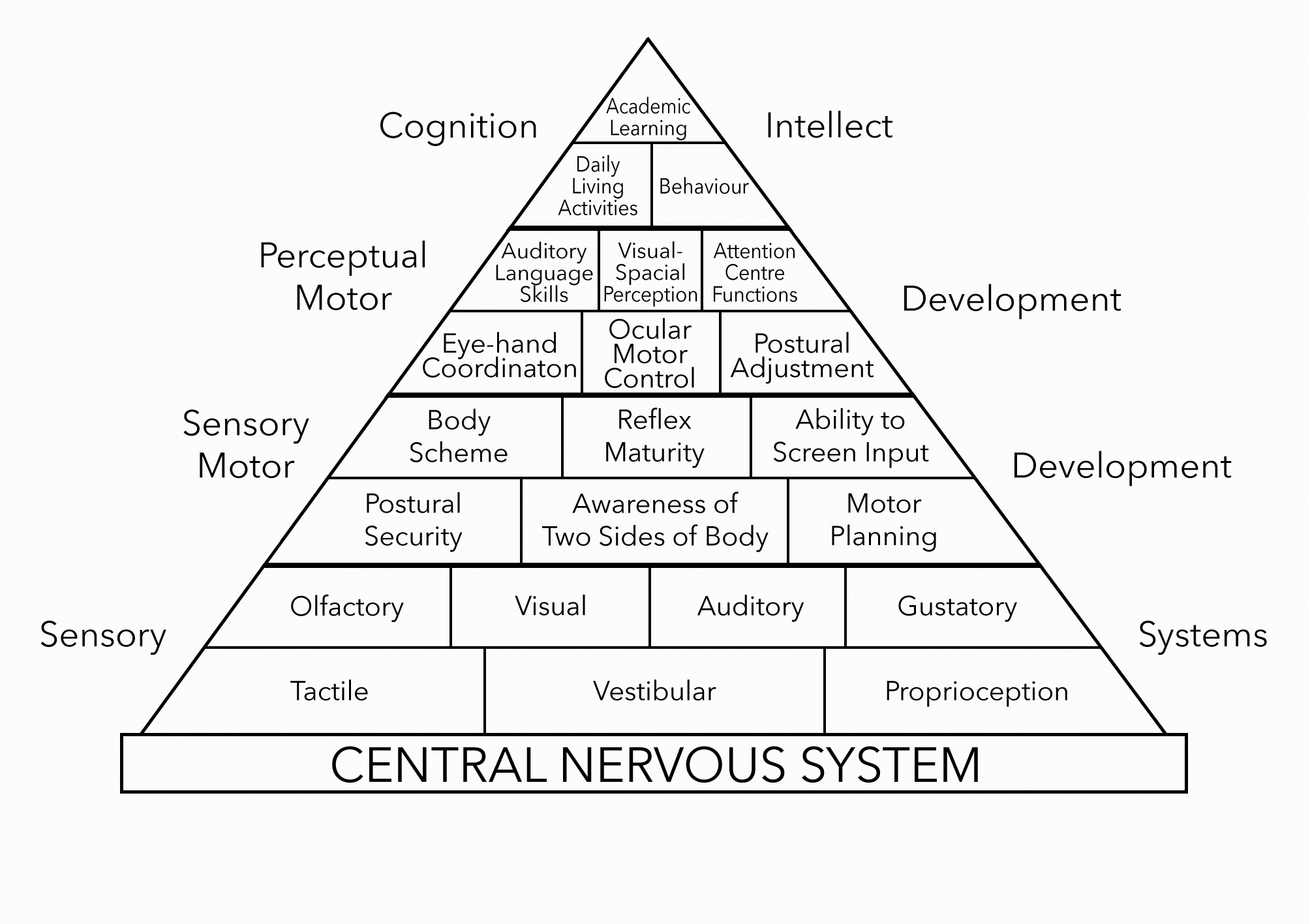 Figure 1.  Pyramid of Learning (Williams and Shellenberger)