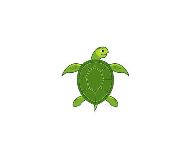 Turtle+Shrunk.jpg