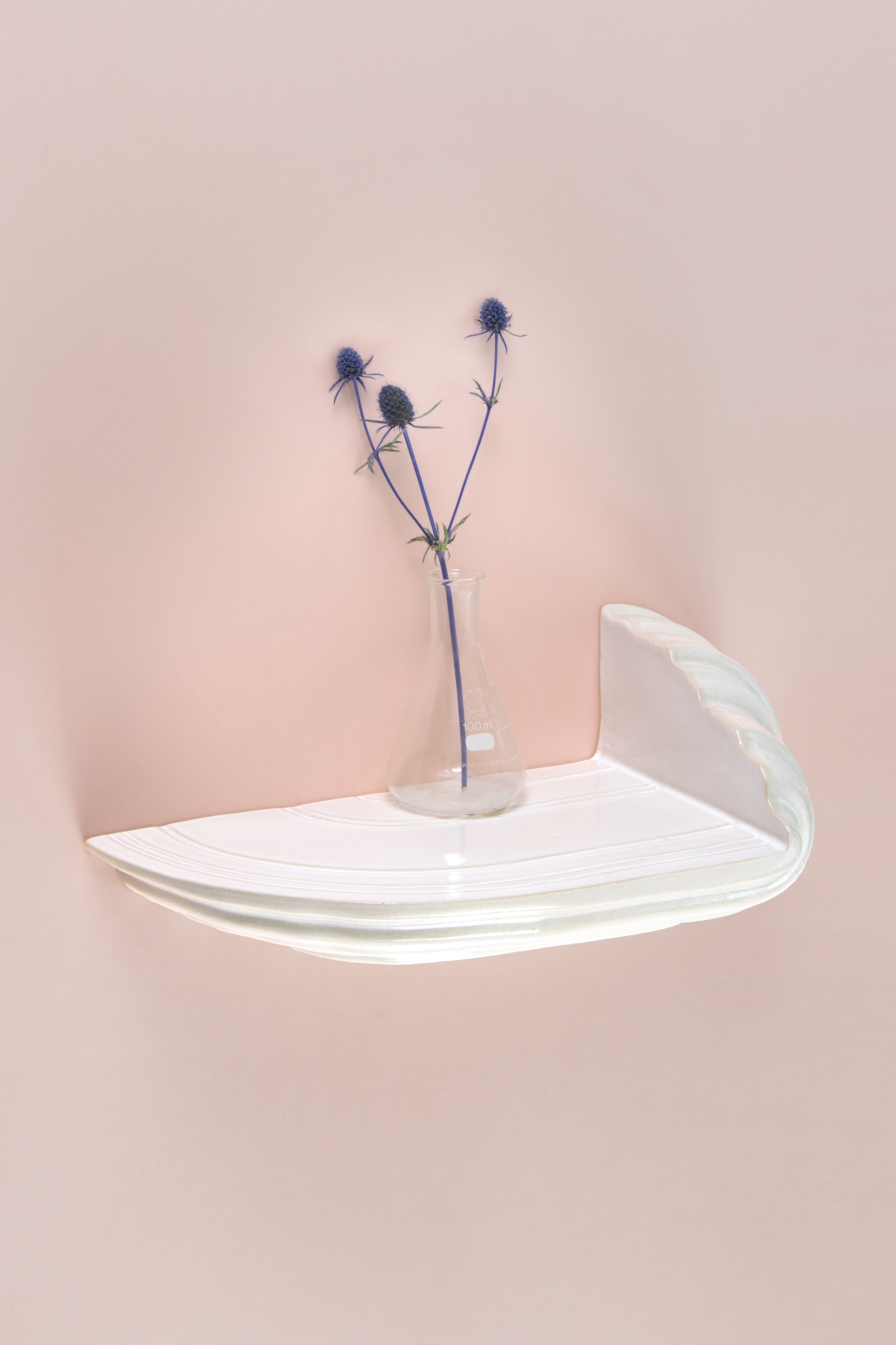 Boschroom M - top side on pink - David Derksen Design.jpg