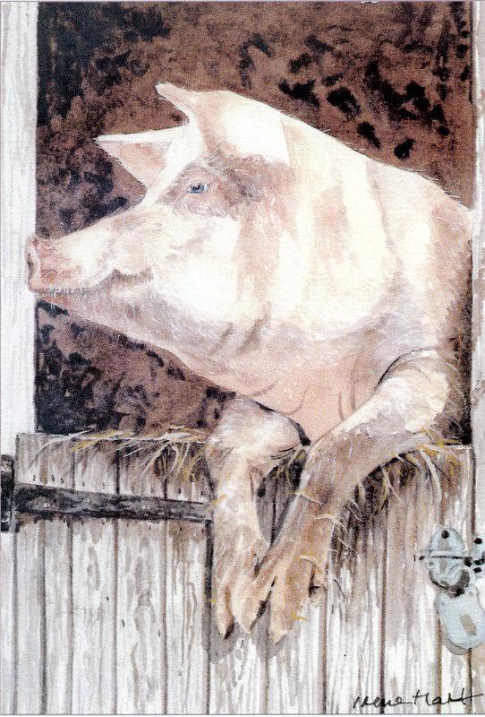 What a Boar! (Watercolour)