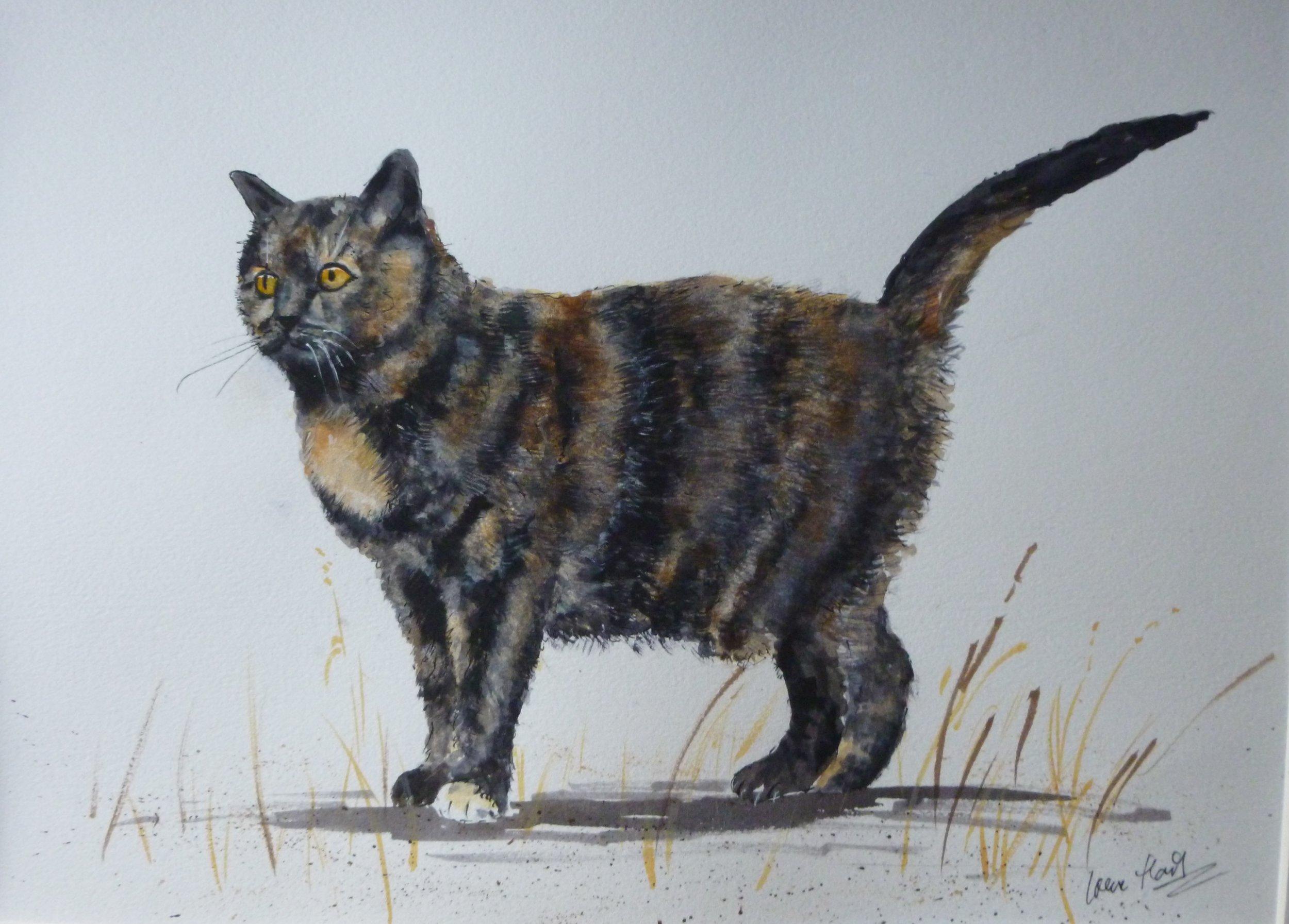 Tortoiseshell Cat (Watercolour) Commission
