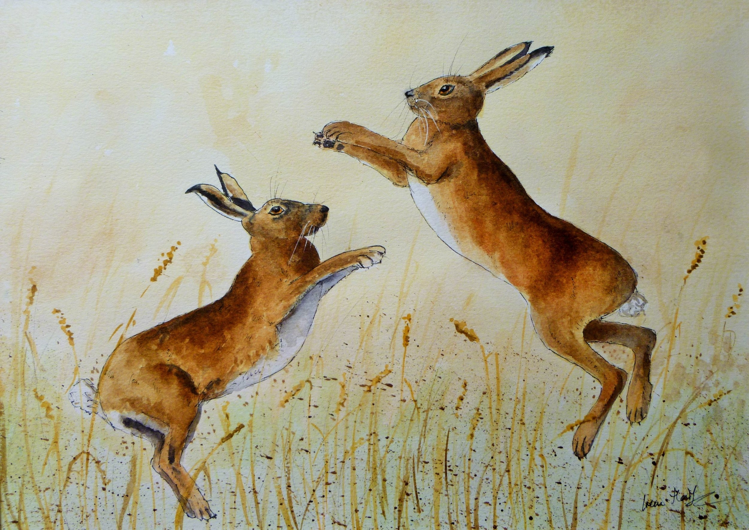 Boxing Hares (2)