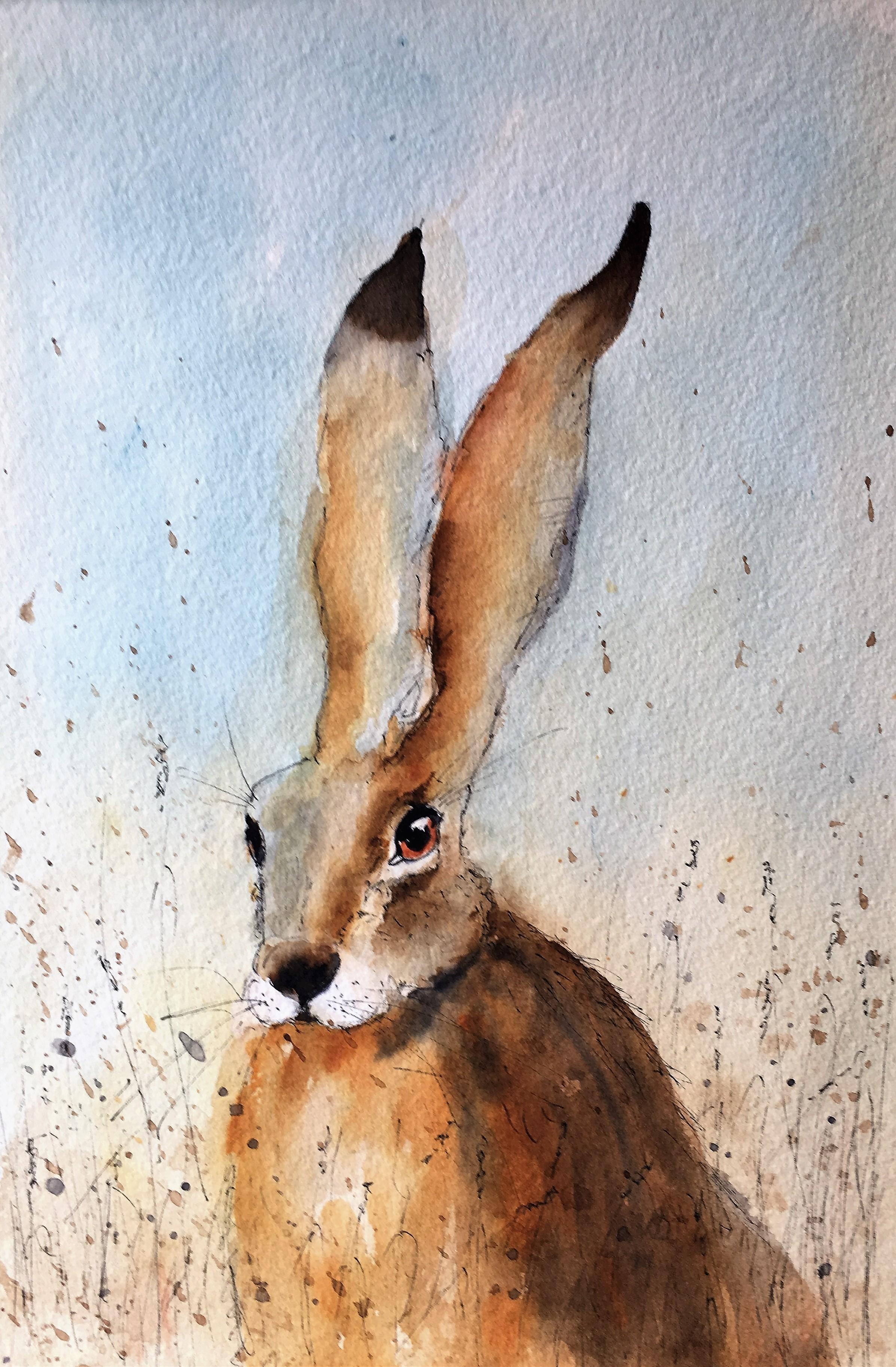 Hare (2)