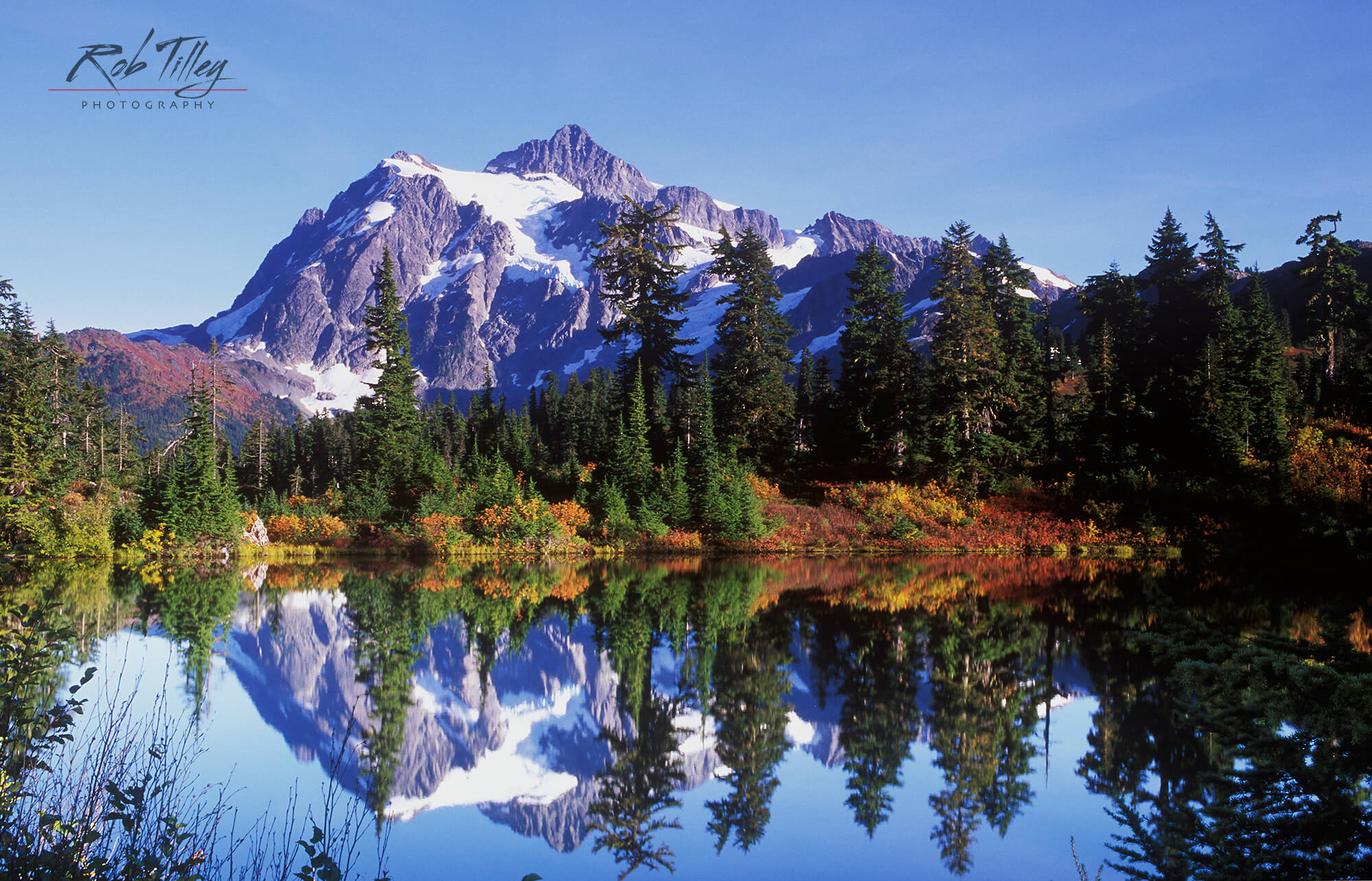 Picture Lake Autumn.jpg
