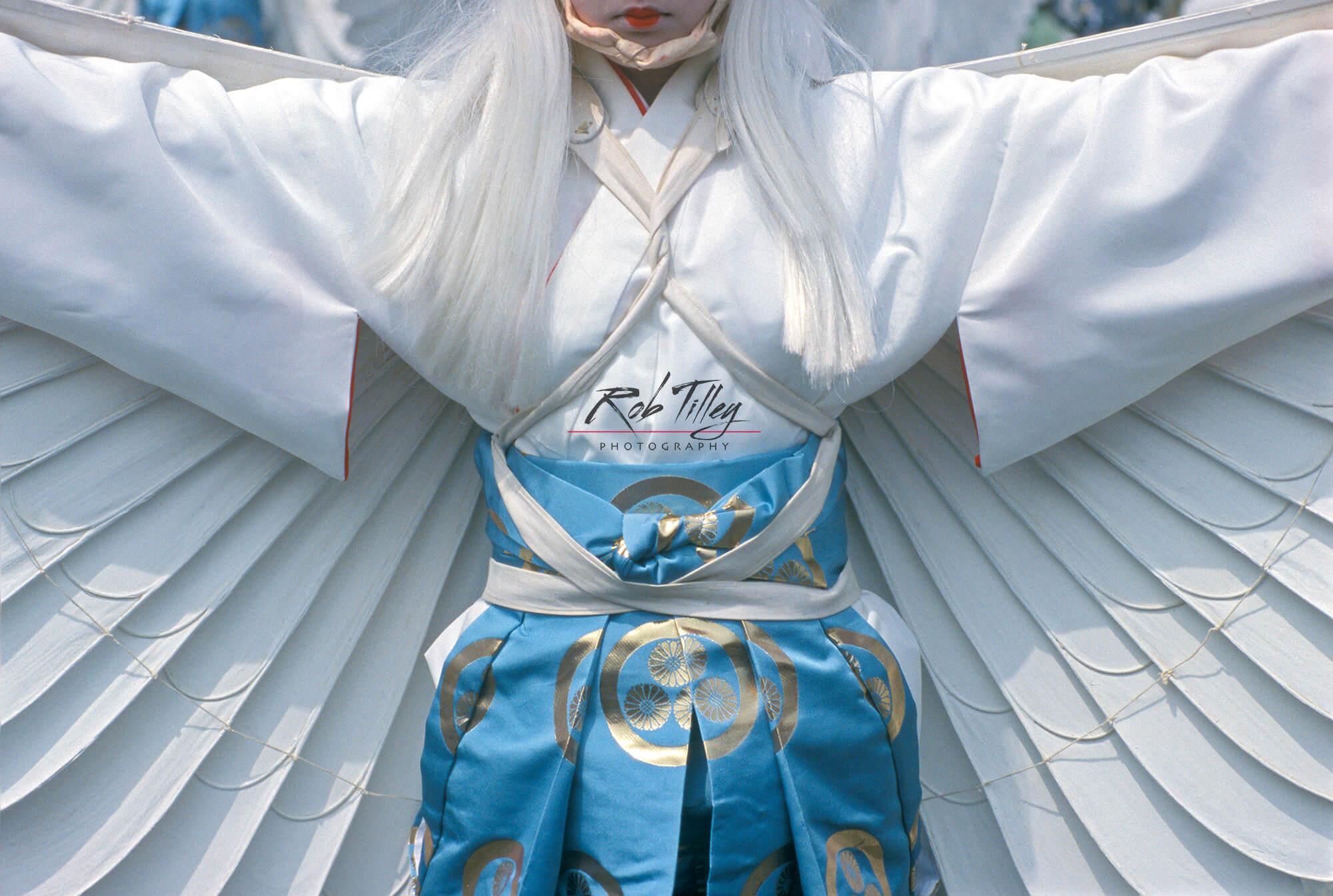 White Heron Dance