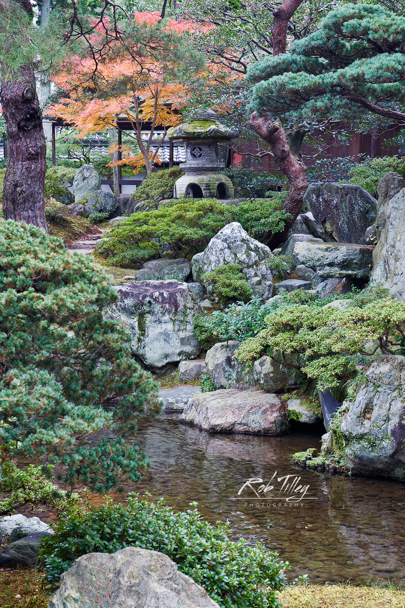 Kyoto Imperial Palace Garden II