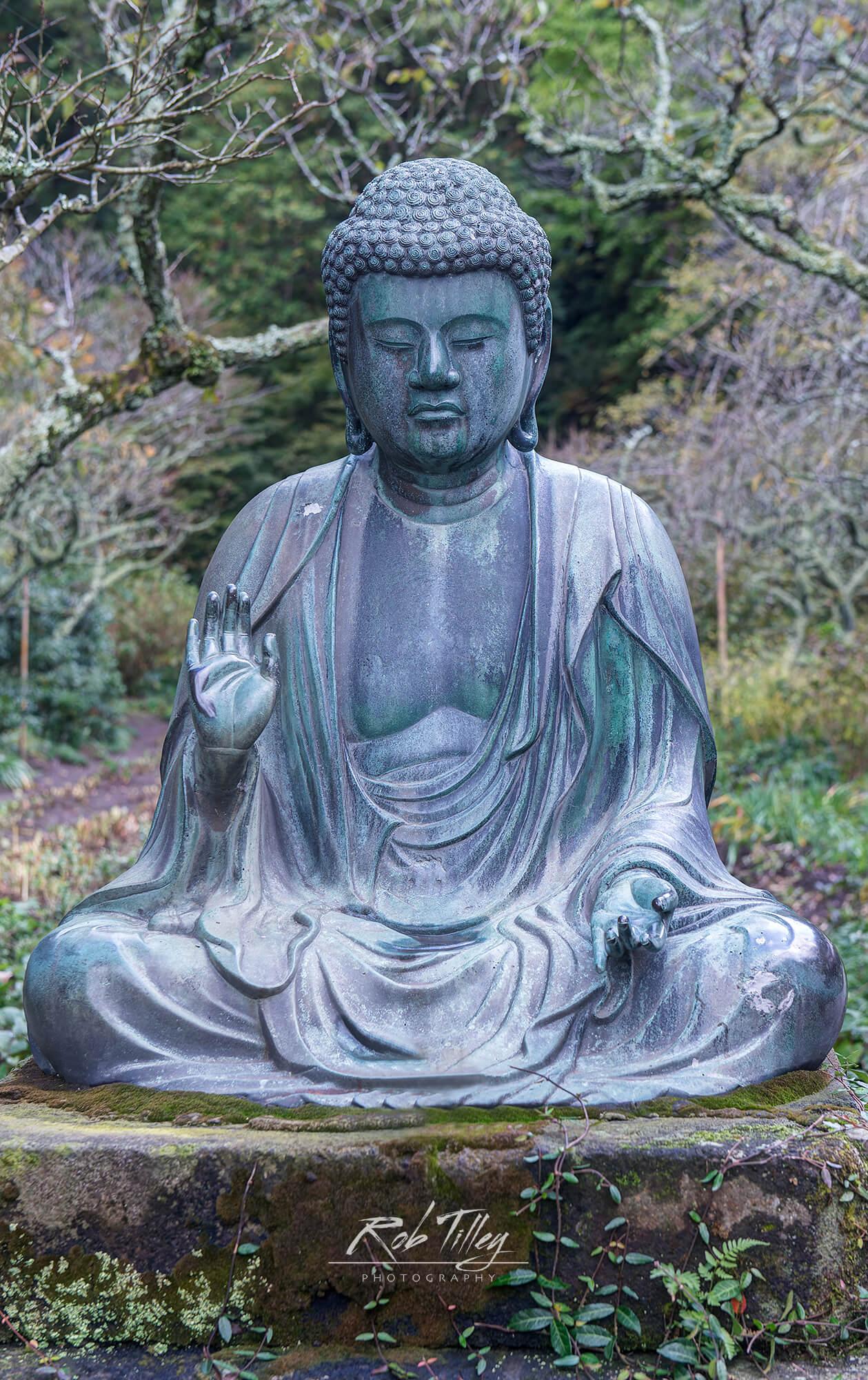 Temple Buddha