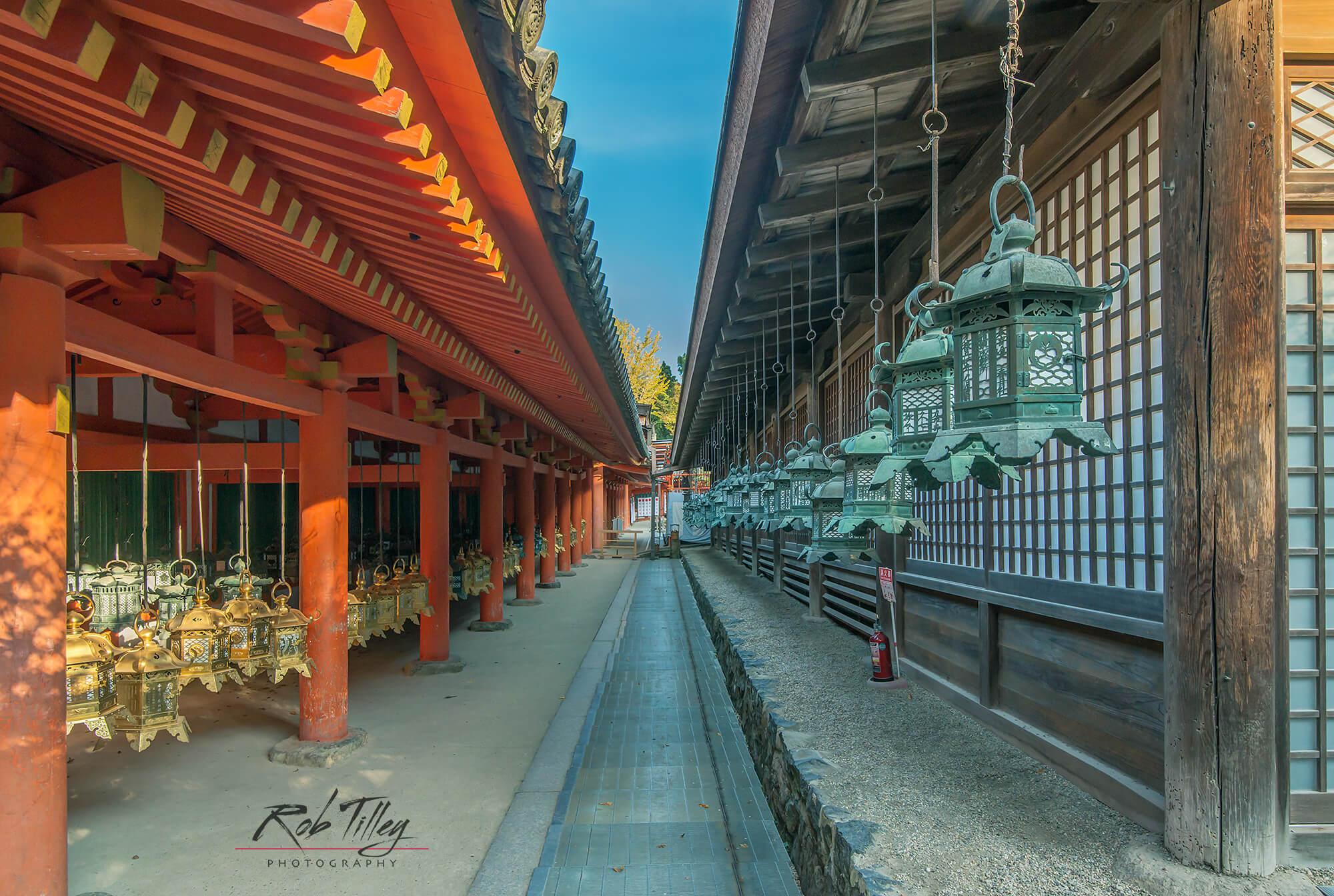 Kasuga Shrine Lanterns II