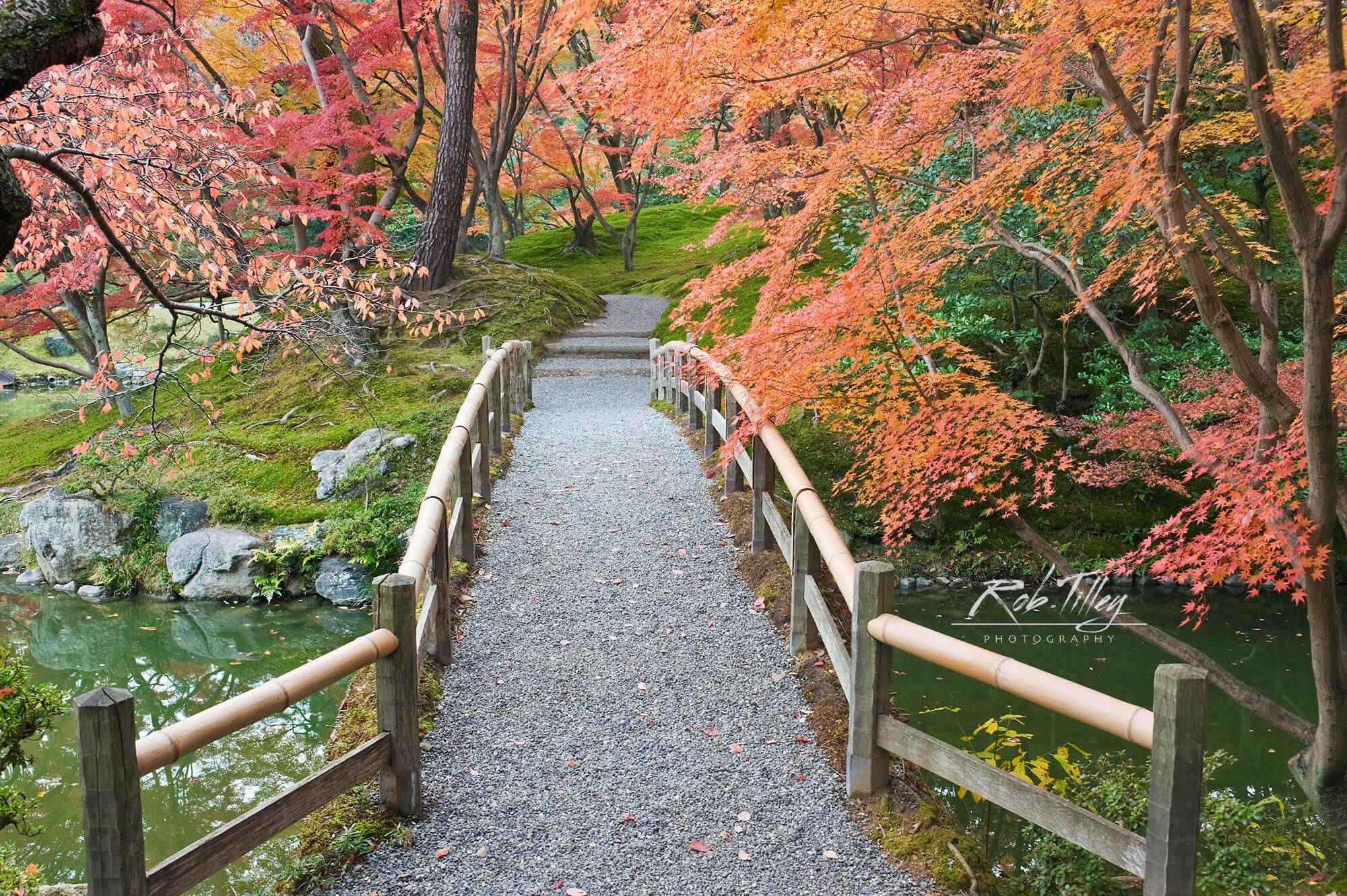 Sento Imperial Palace Garden I