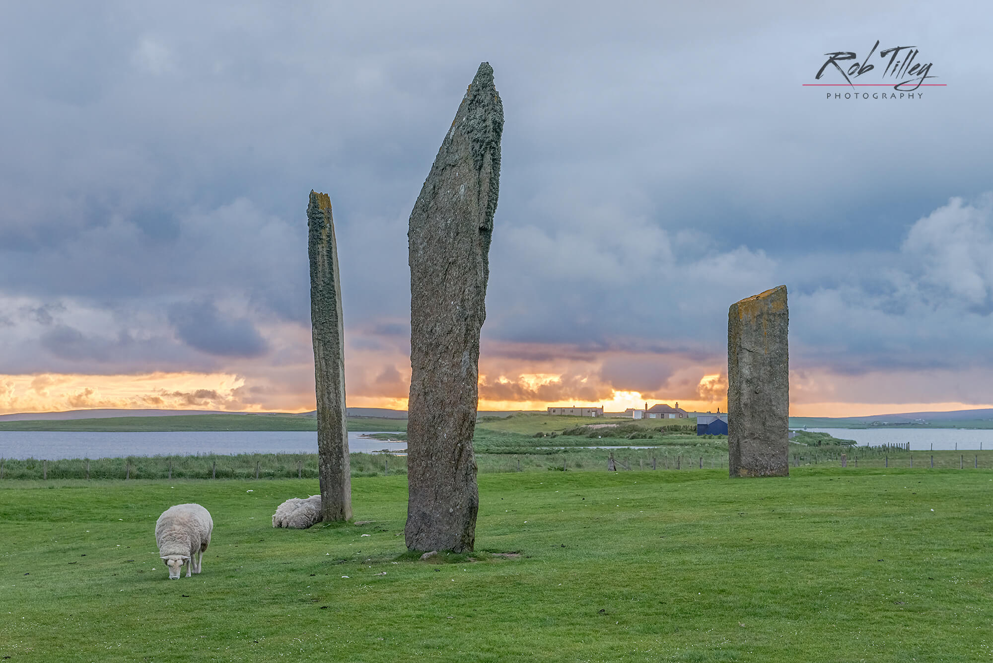 Stones of Stenness Sunset