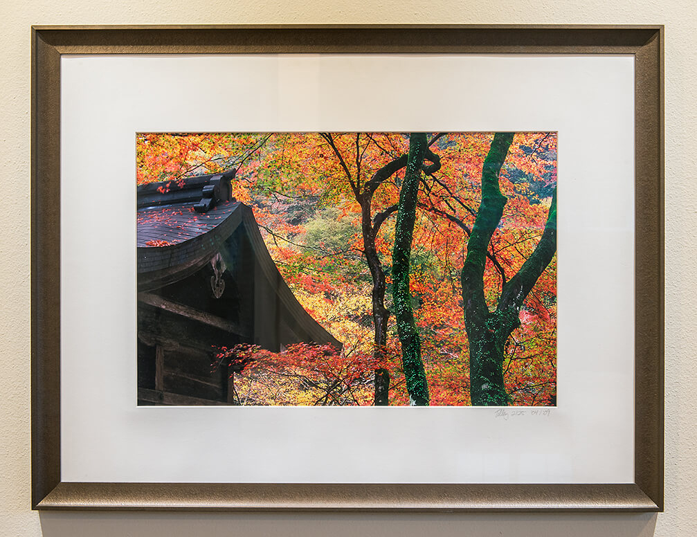 Fujiflex SuperGloss Print with Premium Bronze Frame