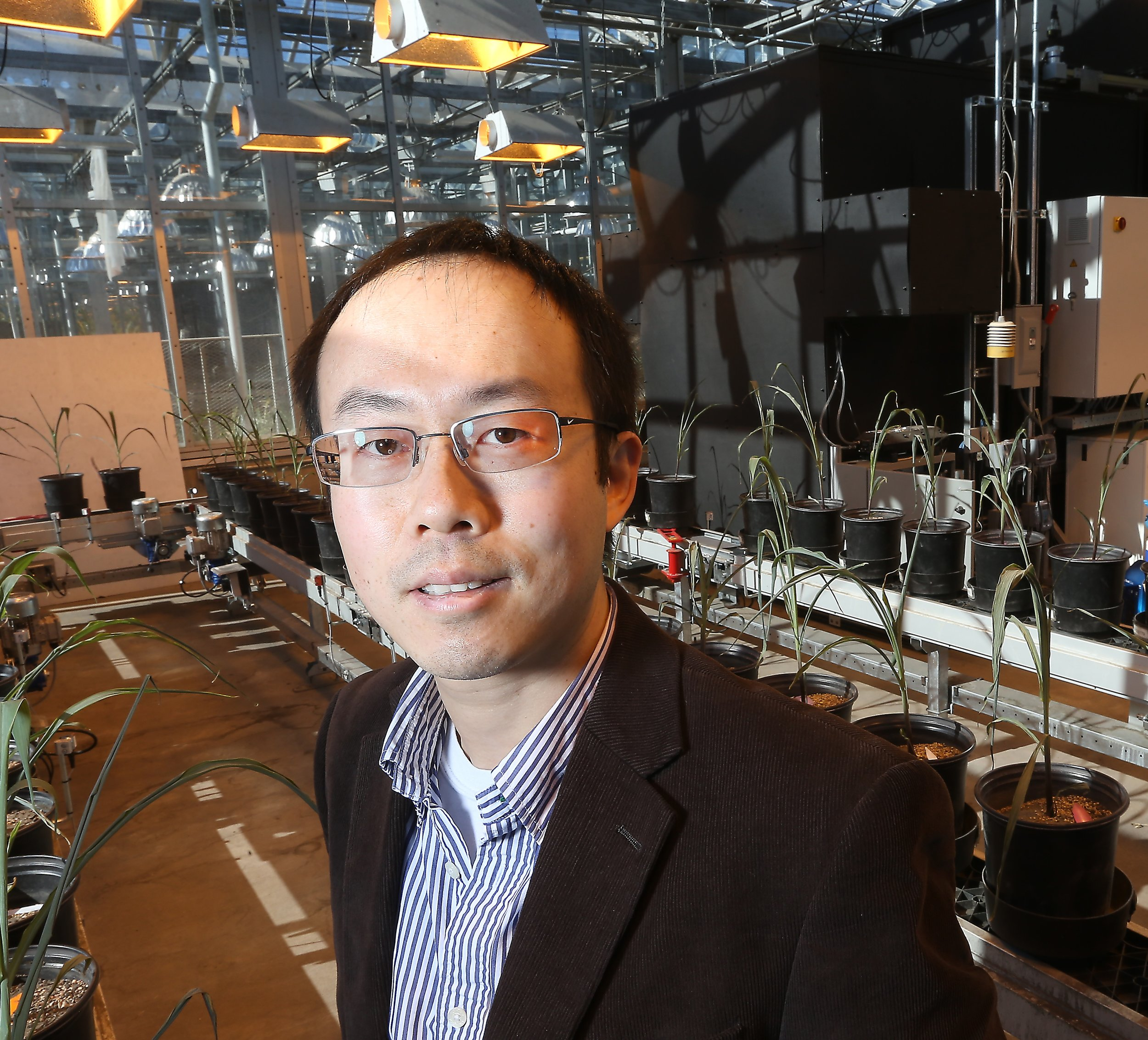 Jian Jin   Assistant Professor, Department of Agricultural and Biological Engineering,  Purdue University