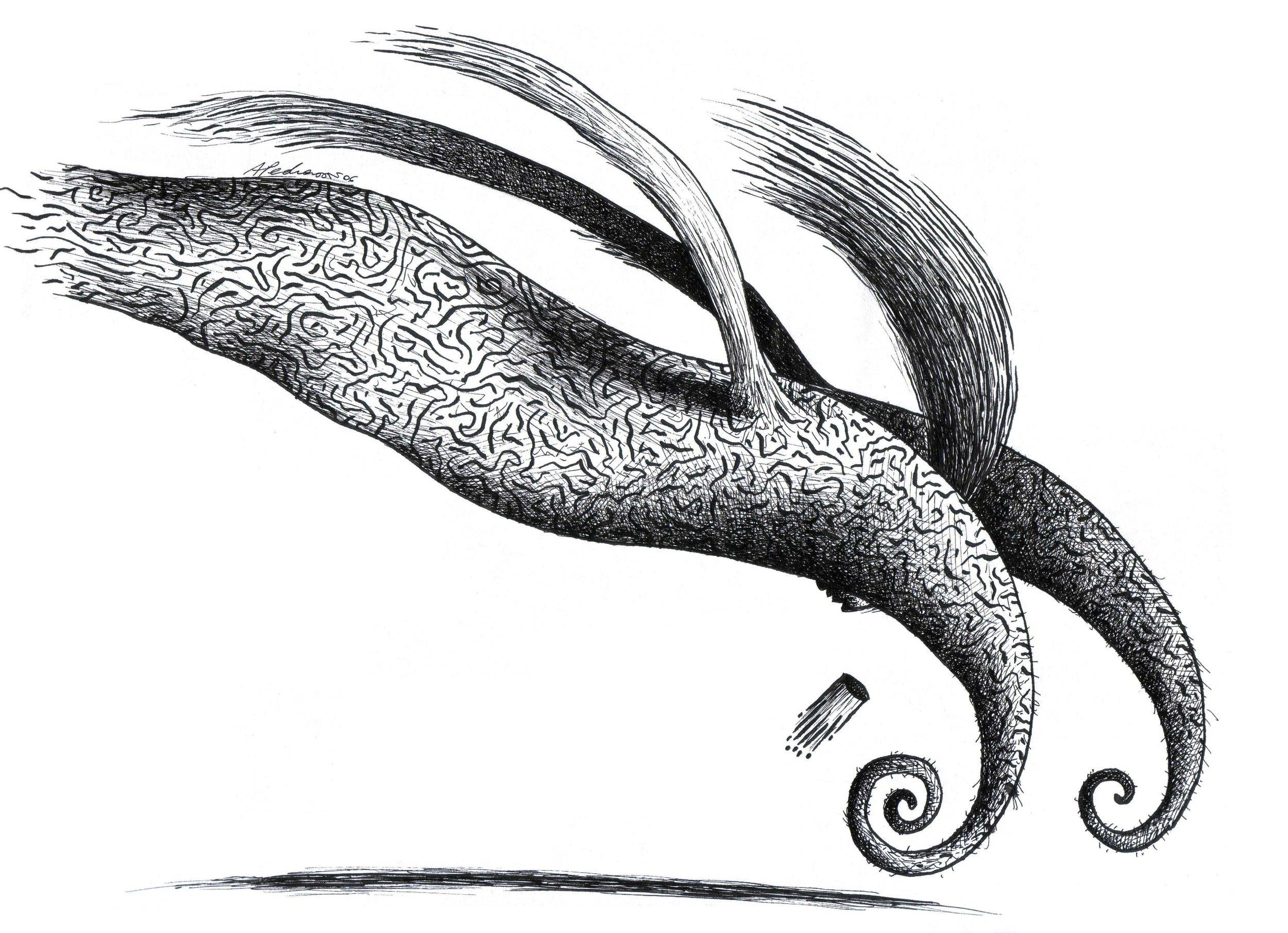Logo.SIR.jpg