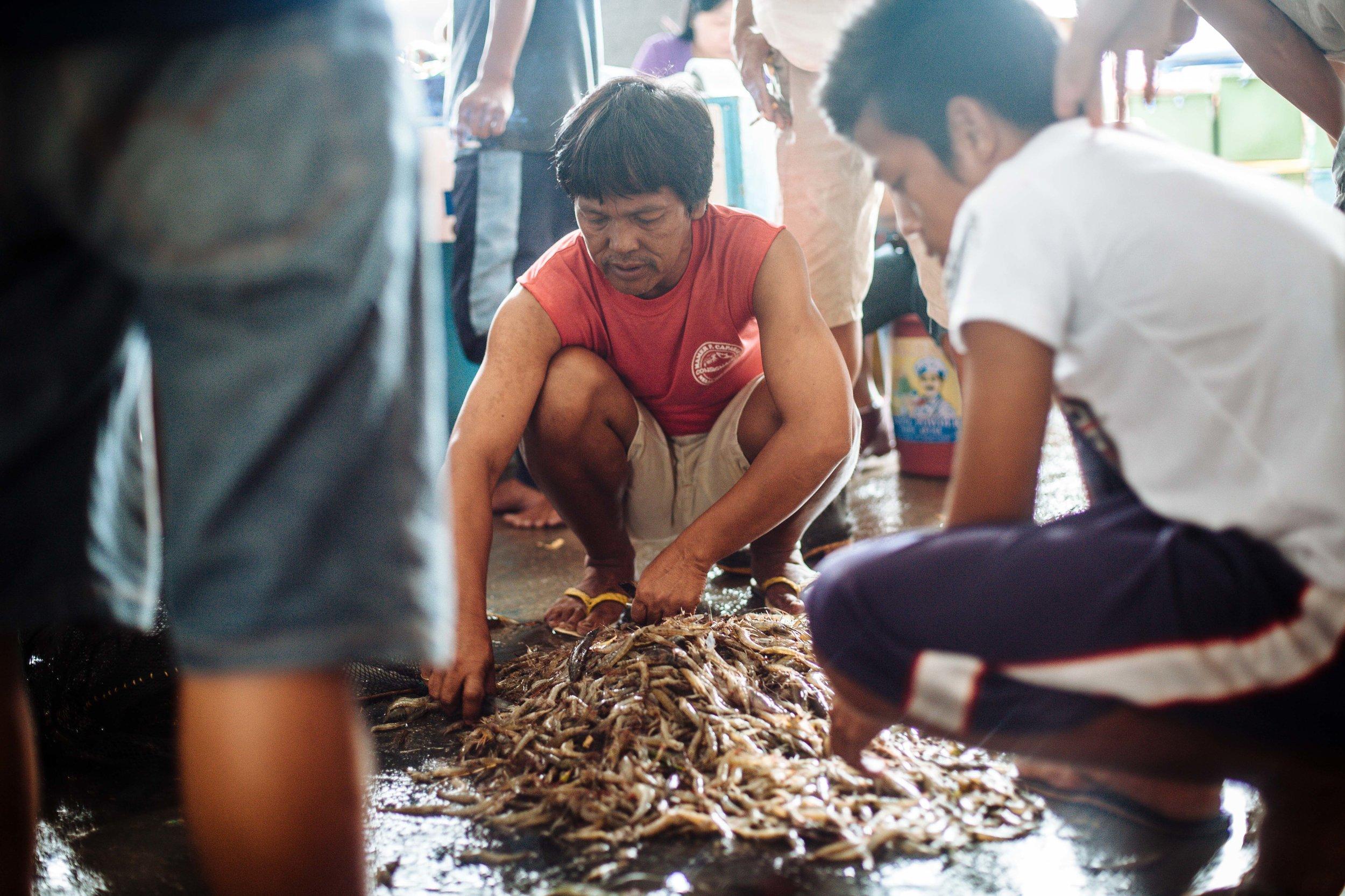 20121116_KU_Philippines_081.jpg
