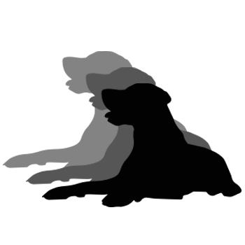 3 dog night update.jpg