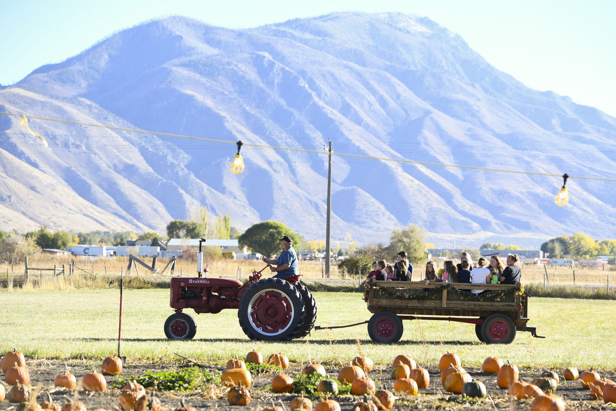 payson country farm fest.jpg