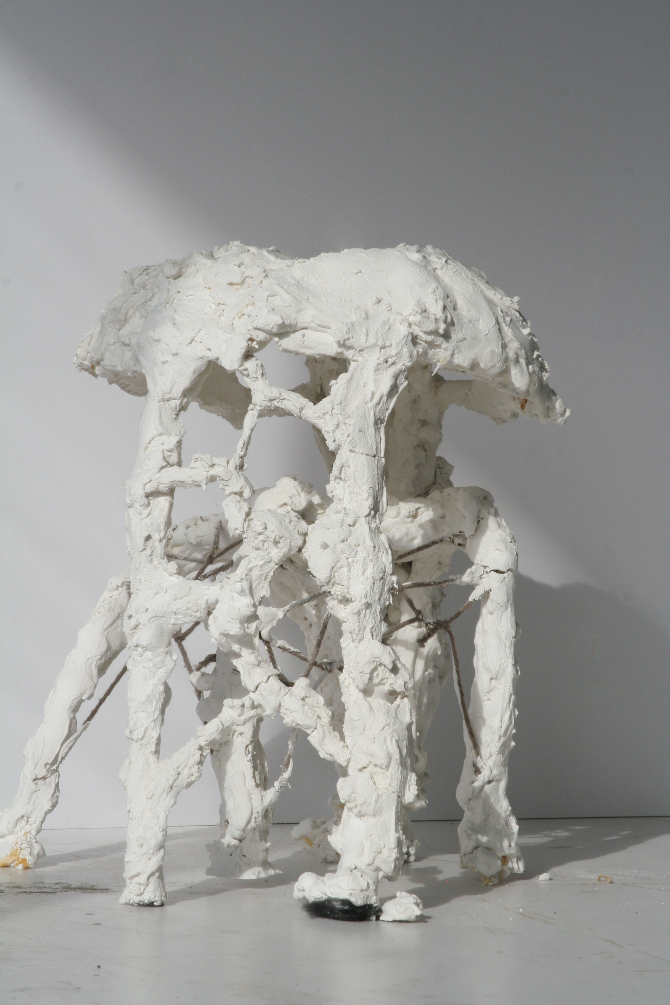 Concept model of observatory, created with braided yarn, string and plaster.  The materials planned for actual construction would be braided steel and concrete.