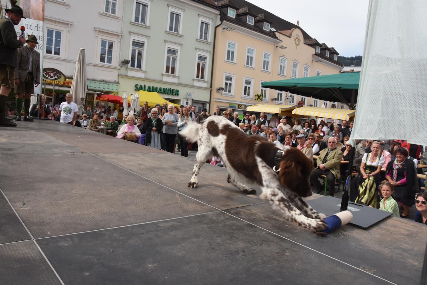 20190922_StadtLandFest-Leoben_1400px_DSC_4073.JPG