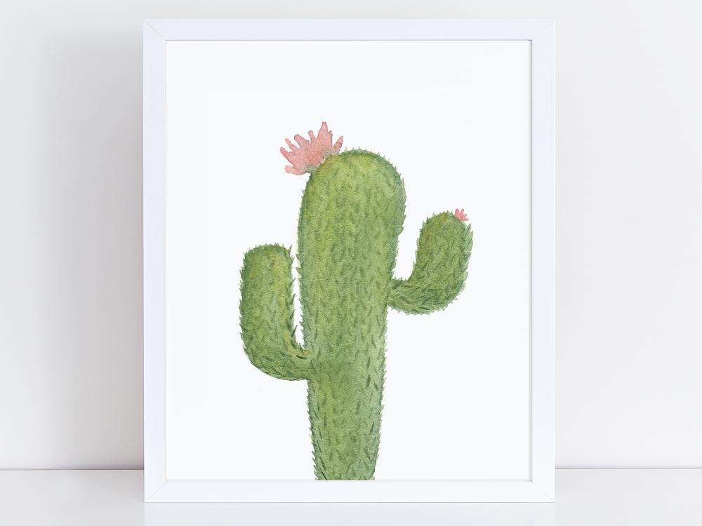 Nature-Cactus-Mock.jpg