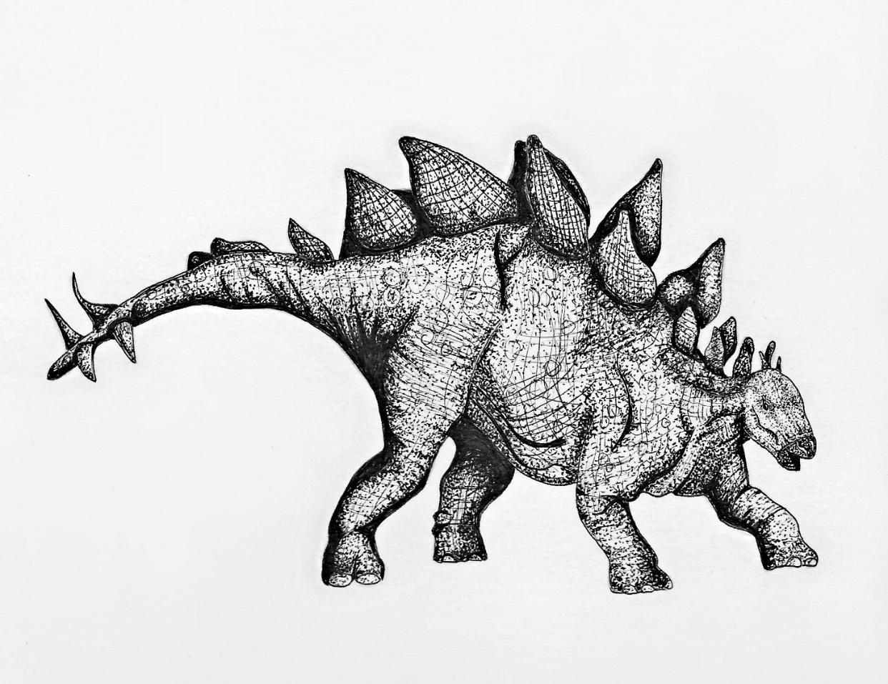 dino stegosaurus.jpg