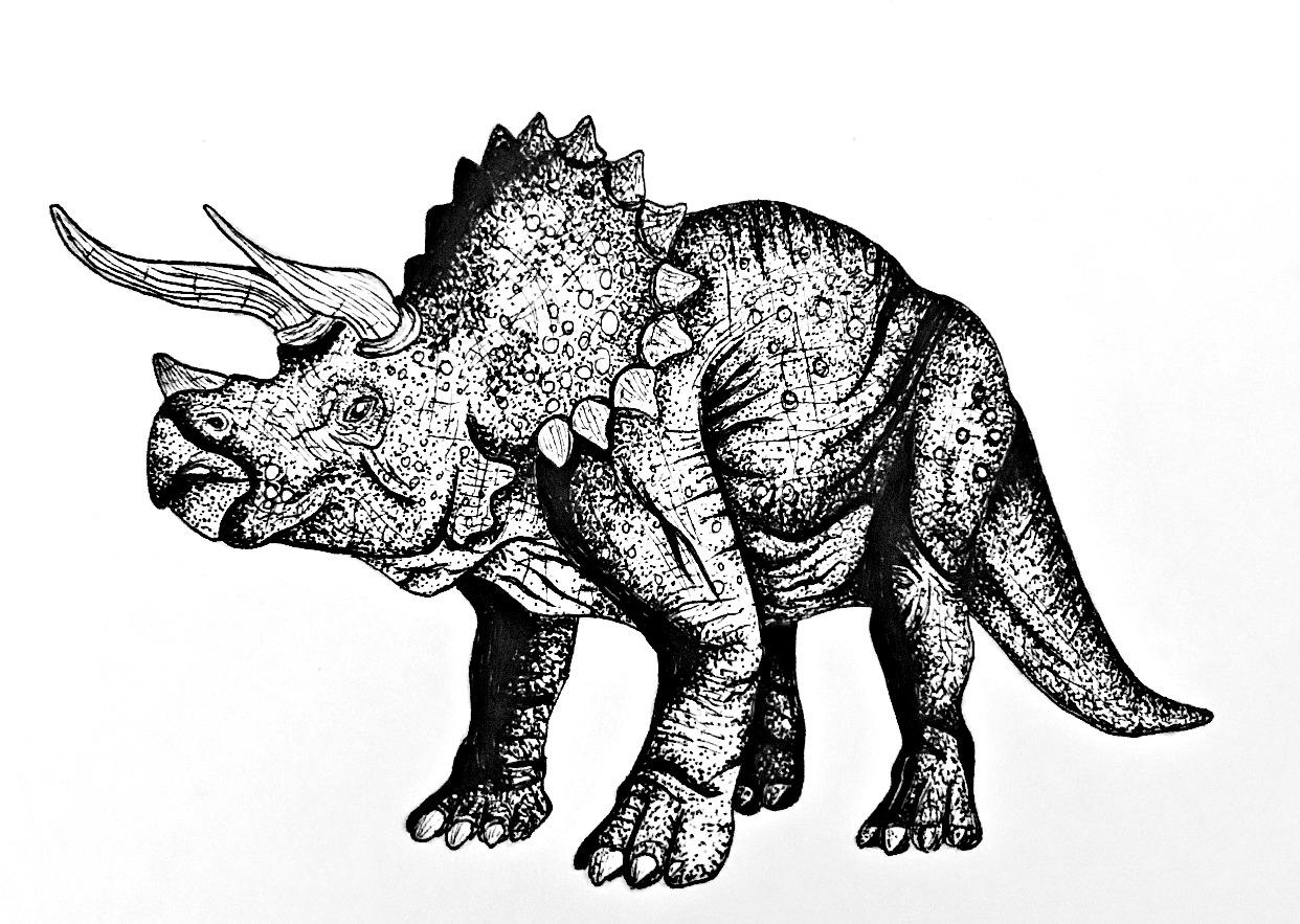 dino triceraptops.jpg