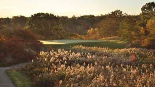 Mens-golfing_web.jpg