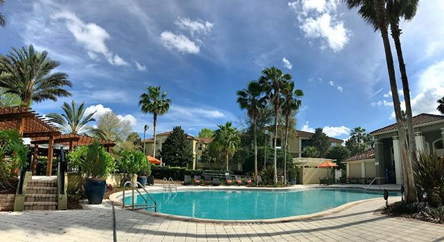 Finally got our shit together & came to sit by the pool & uh...YUP THIS'LL DO. (Apologies to anyone I know who's battling snow today... 😬)