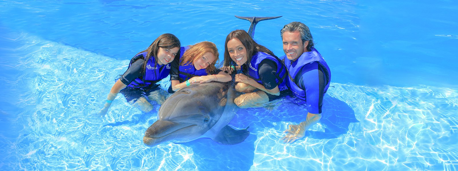 dolphin-swim-ride-experience-cabo-adventures-8.jpg