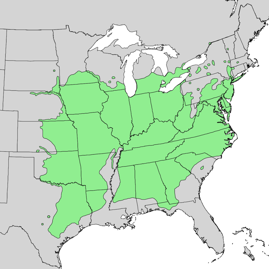 Juglans_nigra_range_map_1.png