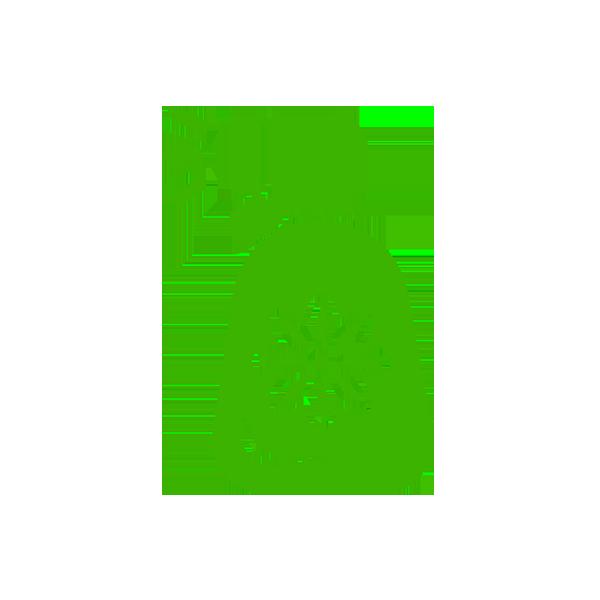 air-plant-fertiliser.png