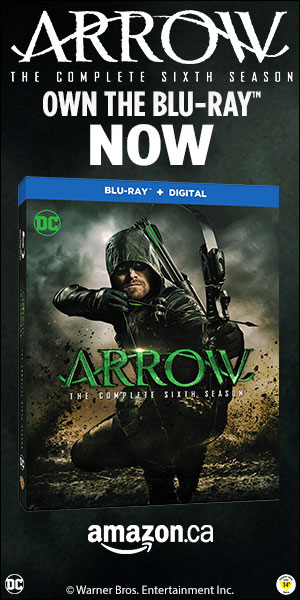 WB_Arrow_S6_300x600_AAPAMAZON.jpg
