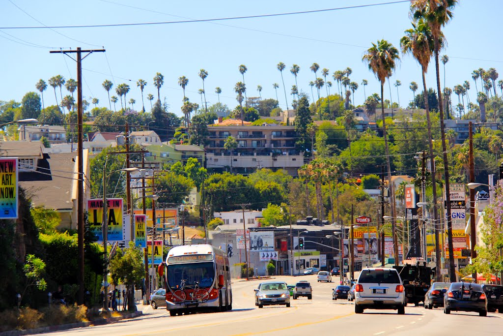 OUR NEIGHBORHOOD - There are so many reasons to love Silver Lake. People who live here value all things local, creative and real. Artists of every stripe call Silver Lake home, from old-timers to new families, all while remaining a diversity neighborhood. Forbes magazine has fallen in love with Silver Lake, naming it the