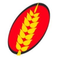 logo-ear-2-transparent.png