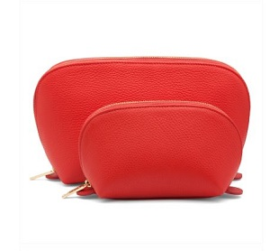 cuyana leather case in colors