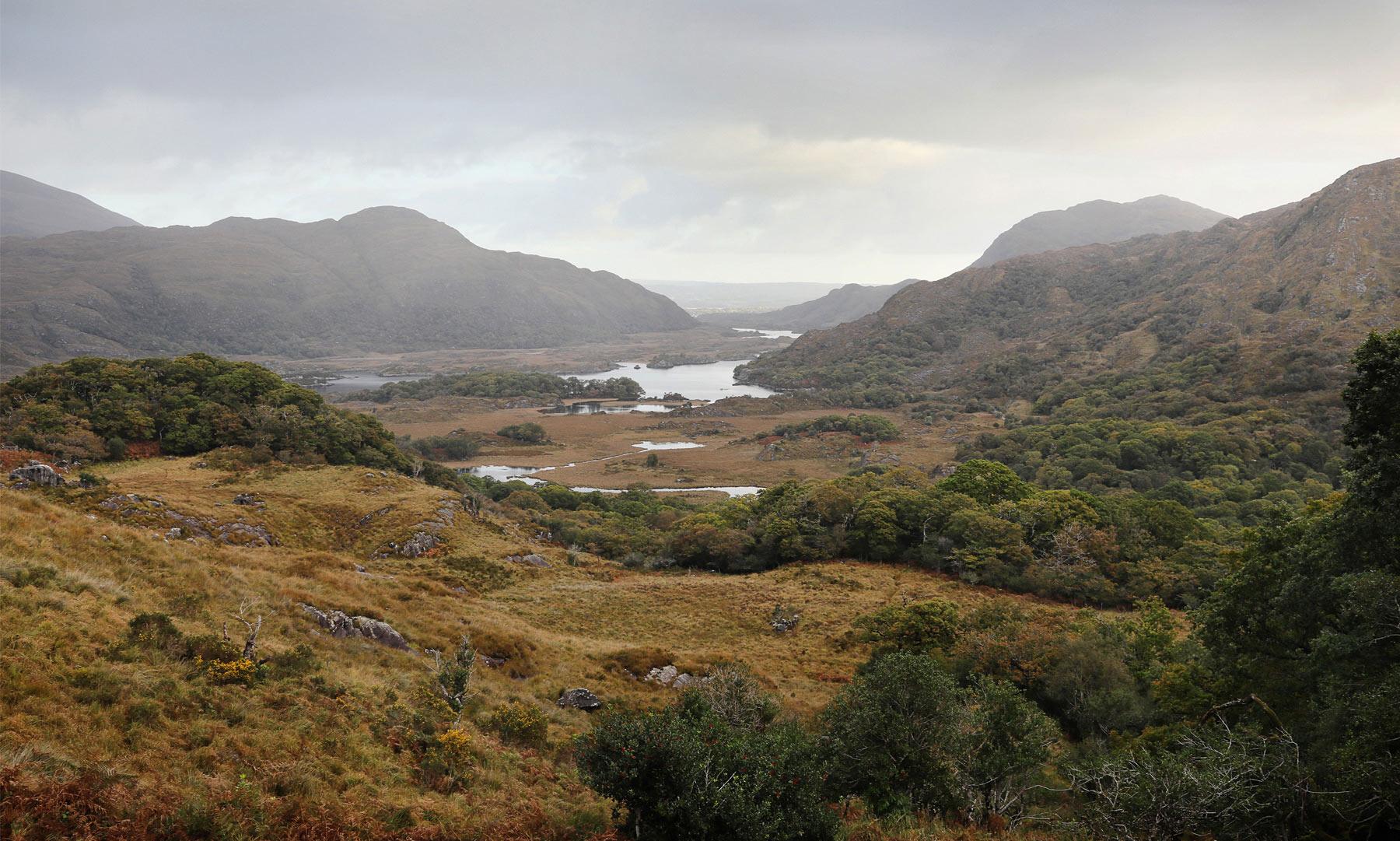 Becca-Donal-Ireland-01.jpg