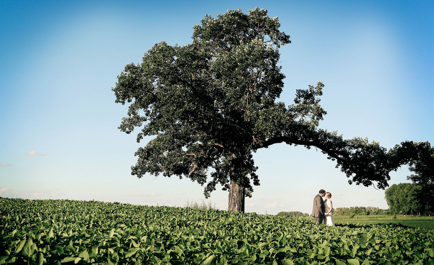 15-Minneapolis-Minnesota-Wedding-Photography-by-Vick-Photography-Minnesota-Harvest-Apple-Orchard-Emilie-&-Giovanni.jpg